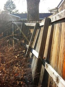 Bruce Kennedy Decks and Fences Windsor Region Ontario image 2