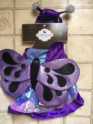 Dog Butterfly Costume (Dog ~ BUTTERFLY ~ Pet Halloween Costume ~ L Large ~ Ciao Ciao ~ )