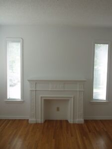 Downtown-Grandin Area-LRT- Fireplace Mantle- Feb 1st