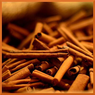10 mL Fragrance Oil Scent Concentrate ❀ Candle Making Soap Bath Bomb ❀ Cinnamon