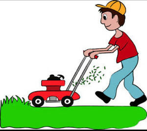 Lawn mower man garden care/matinance Ulladulla Shoalhaven Area Preview