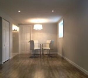 Roommate wanted for trendy basement suite!