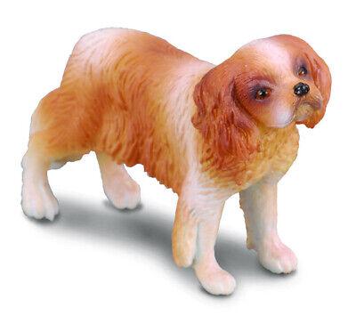 CollectA NEW * Cavalier King Charles Spaniel * 88181 Dog Breyer Figure Toy