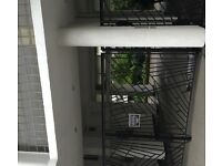 Smaller double, or bigger single room in 2 bedroom flat, all bills and wifi included in price
