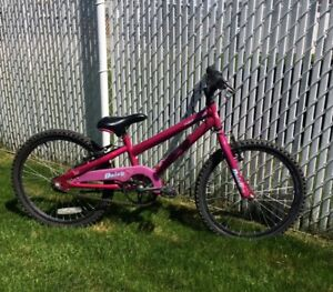 "19"" Girls Norco Mountain Bike"
