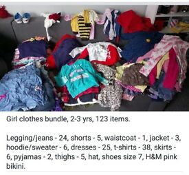 Girl clothes bundle, 2-3 yrs, 123 items