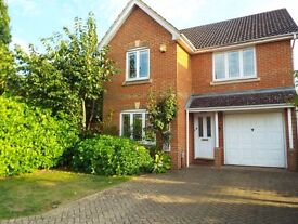 Woking - Luxury professional house share in large detached house