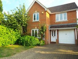 3 double rooms for professionals available in luxury house - low deposit!