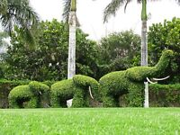 LOCAL LANDSCAPER,GARDENER AVAILABLE IN YOUR AREA TODAY .CALL NOW AT 07730463693