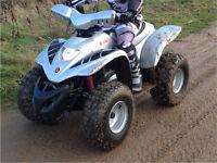Apache rlx 100cc quad