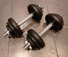 Cast Iron Dumb bell Spinlock weights