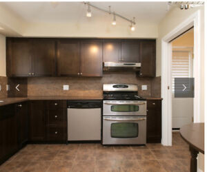 9x10 Stained Maple Kitchen w/ Counters, Faucet