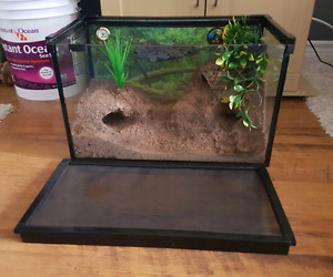 Terrarium with Background and Neat Landscaping