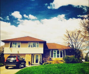 Beautiful Furnished Home on the Escarpment overlooking Dundas!!