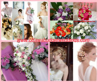 AFFORDABLE EVENTS at 613 7291583+Family photos+Makeup  from $29+