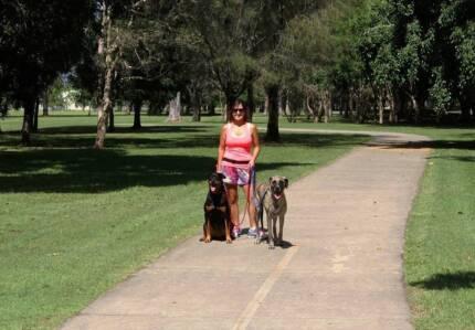 Canine Journeys - Dog Training & Behaviour Specialist