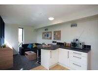 Large and cheap apartments for Edinburgh Festival, 2,3, 4 and 5 bed available