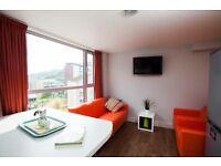 Holyrood 5 Bedrooms - available for summer and the Edinburgh International & Fringe Festivals.