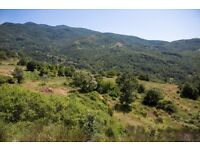 LAND FOR SALE IN TUSCAN VALLEY WITH PLANNING PERMISSION FOR 1000sqm OF BUILDINGS