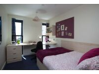 Ensuite Room Available at Portsburgh Court