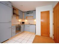 Perfect cosy 1 bedroom flat in Royal Docks