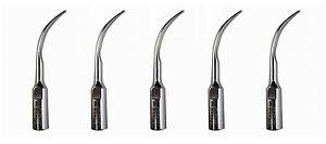 5Pcs Dental Ultrasonic Scaler Tips Scaling GD4 For Original DTE Satelec Ultrason