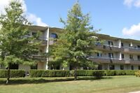 Canterbury Place - The Margrave Apartment for Rent