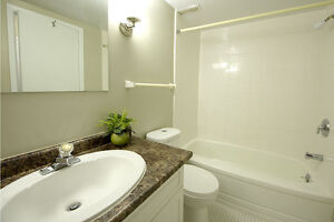 GREAT 3 Bedroom Apartment for rent MINUTES to DOWNTOWN! London Ontario image 7