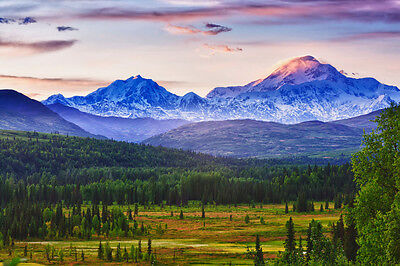 Denali and Alaska Range - 3D Lenticular Post Card Greeting Card     ()