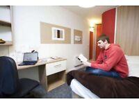 Student room £150 per week