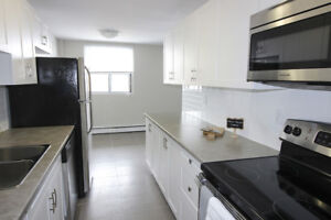 Renovated 1 & 2 BDRM Apts-Pets Welcome!