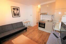 1 bedroom flat in Judd Street WC1H