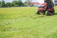 Lawn care /snow removal