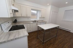 Furnished 3 Bedroom 1200 sq ft apt in Locke Street Area