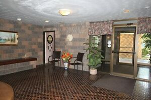 Northgate Towers - The Michigan Apartment for Rent Sarnia Sarnia Area image 3