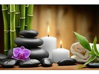 Thai Massage Therapist