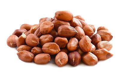 Peanuts Redskin Raw - 1, 3 , 5 , 7 lbs Bags / 10, 20 lbs Bulk - US Grown