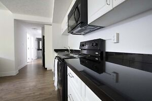 Student Apartments for Rent! Great for Sharing! WIFI Included! Kitchener / Waterloo Kitchener Area image 7