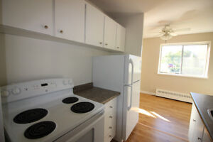 Renovated 2 Bed Apt for Rent! Pet Friendly!