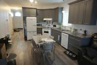 Brand New Four Bedroom, Two Bath in Kingston's West End - Nov 1
