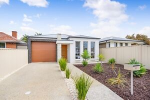 12 month old House for Rent in Clovelly Park Clovelly Park Marion Area Preview