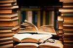 lu's books plus