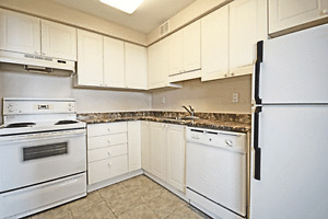 All-Inclusive 1 Bed 1 Bath on Margaret Ave! Kitchener / Waterloo Kitchener Area image 6
