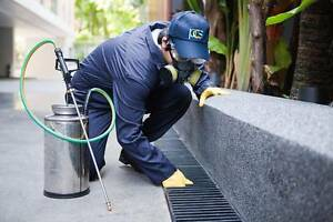 ** SYDNEY WIDE PEST CONTROL** WE KILL ALL BUGS ANTS SPIDERS****** Ryde Ryde Area Preview