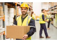 Apprentice Warehouse Worker Wanted