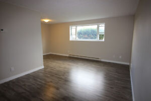 Newly Renovated Pet Friendly Apts! Available NOW!