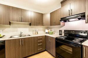 Brand new apartments! 2bed,2bath w/insuite laundry - SW Edmonton Edmonton Edmonton Area image 4