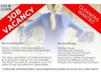 Cleaners Wanted Urgently to service domestic clients in Hampshire and Surrey - immediate start