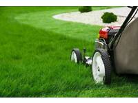 Hudson garden maintenance