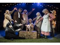 Babe Theatre Tickets - Nuffield Theatre Southampton - Half Term - ANYDAY